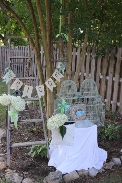 vintage birdcage14