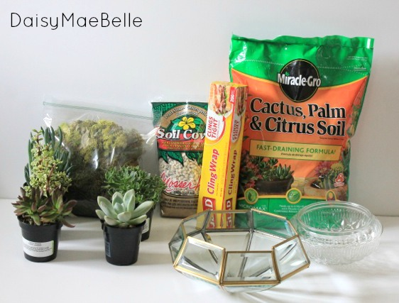 Supplies for a DIY Terrarium @ DaisyMaeBelle