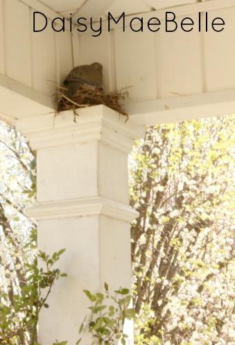 Front Porch @ DaisyMaeBelle