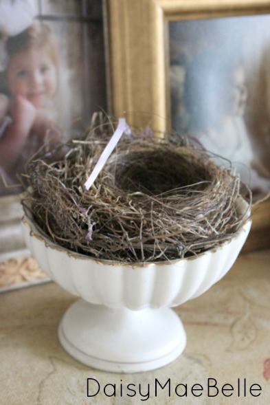 Nests for Decorations @ DaisyMaeBelle