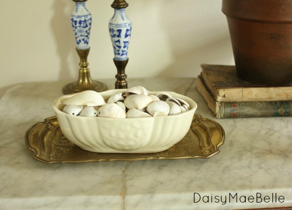 How to Display a Shell Collection @ DaisyMaeBelle