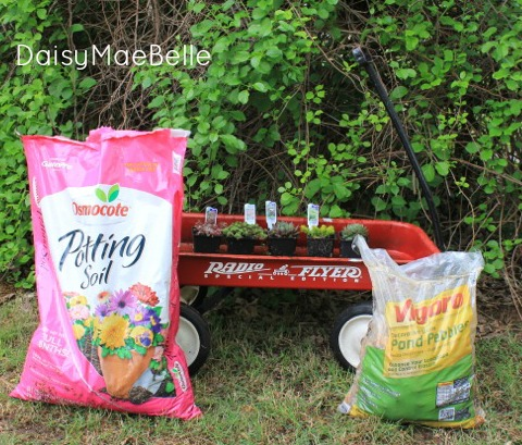 Supplies for Wagon Succulent Garden @ DaisyMaeBelle