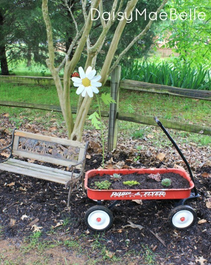 Succulent Garden in a Wagon@ DaisyMaeBelle