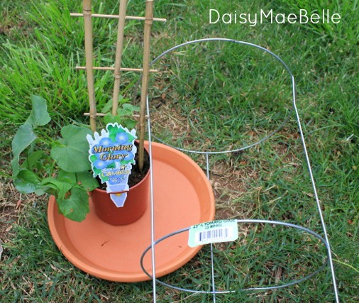 Supplies for DIY Tomato Cage Bird Bath @ DaisyMaeBelle