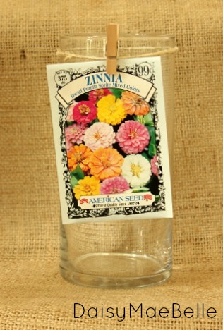 Using Seed Packs to Decorate a Plain Vase @ DaisyMaeBelle