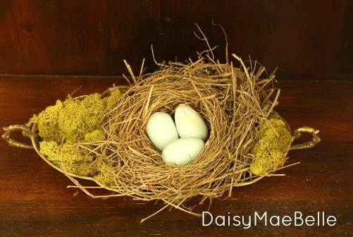 Decorating with Nests @ DaisyMaeBelle