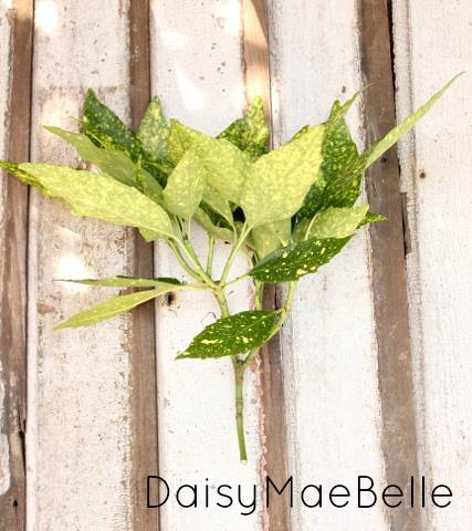 Simple Flower Arrangement @ DaisyMaeBelle