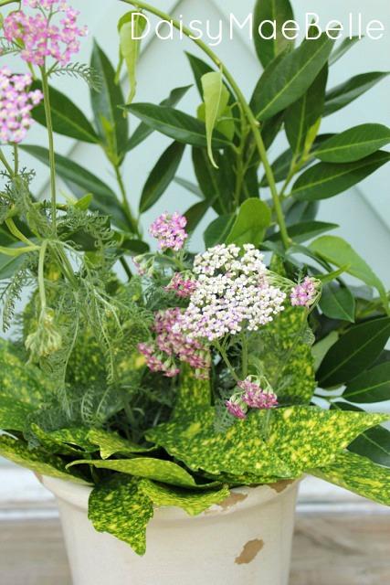 How to Make a Flower Arrangement @ DaisyMaeBelle