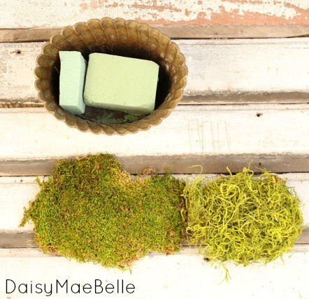 Decorating with Moss @ DaisyMaeBelle
