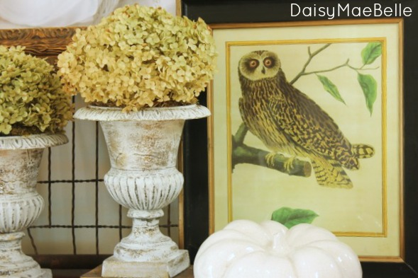 Decorating with owls