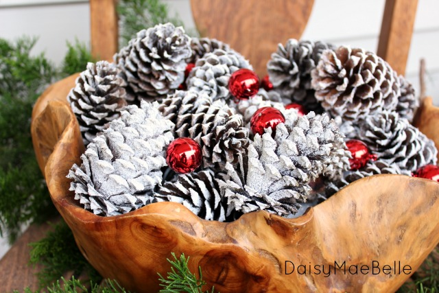 Snow covered pinecones