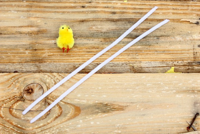 How to Make Pipe Cleaner Eggs