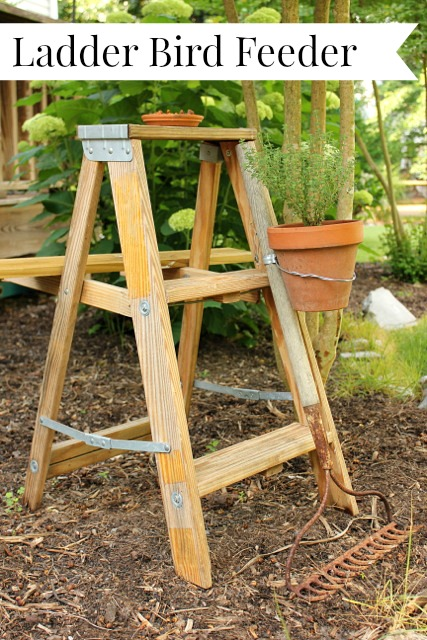 Ladder Birdfeeder