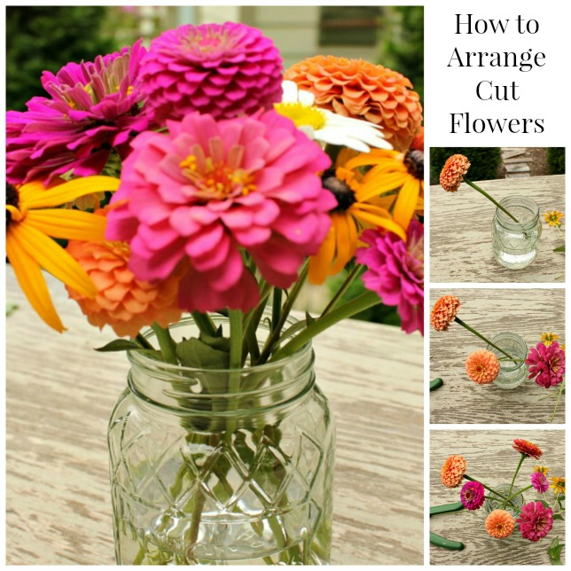 How to Arrange Cut Flowers