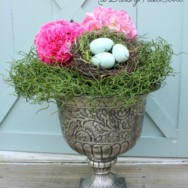 Simple Spring Arrangement