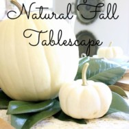 A Simple Natural Fall Tablescape